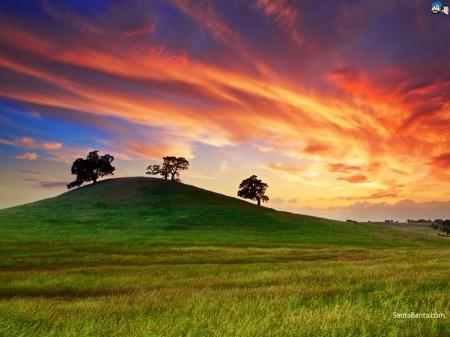 landscapes-284a